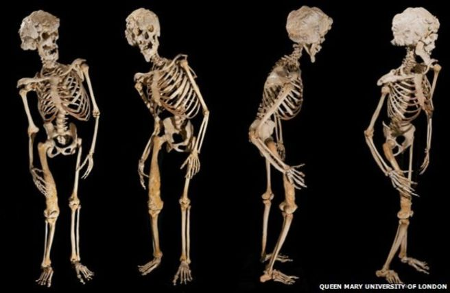 _69521959_bones-624