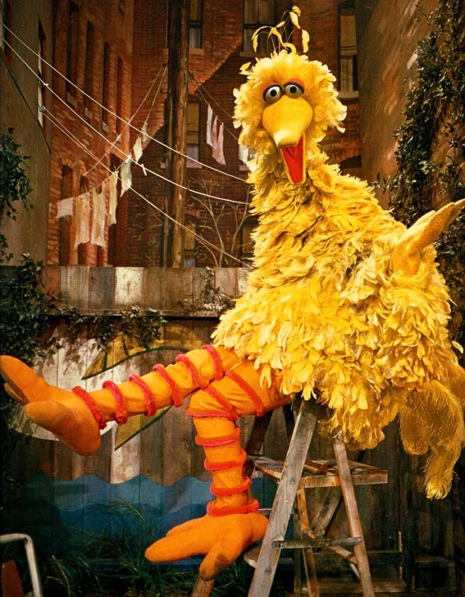 BigBird1970 (1)